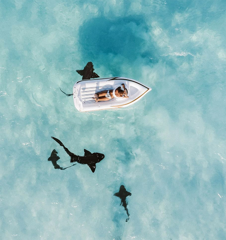 Shark-spotting: some countries use drones to track the movement of sharks near the coastline | Photo: Creative Commons