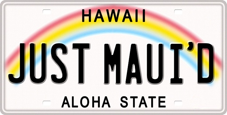 Aloha State: Hawaiian license plates are extremely cool | Photo: thelicenseplatesite.com