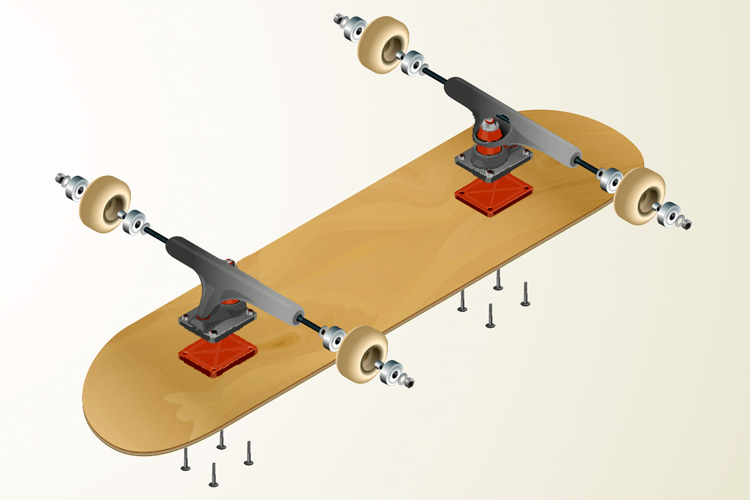 Skateboard: its three main components are the deck, the trucks, and the wheels | Illustration: Shutterstock