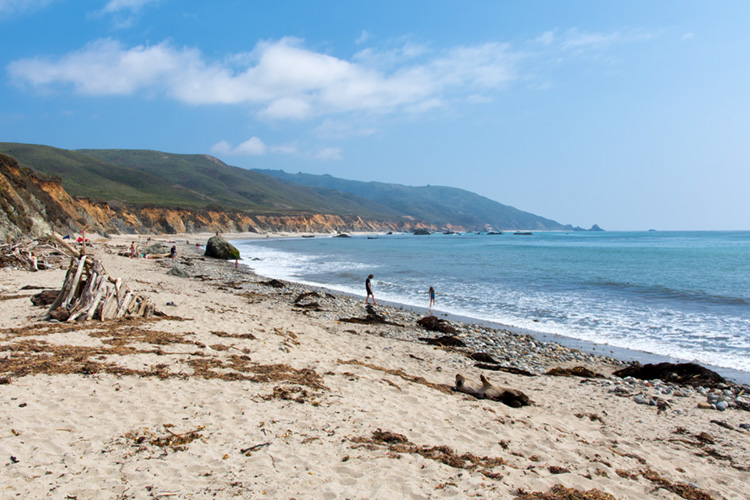Andrew Molera Beach: a sheltered beach break | Photo: Shutterstock