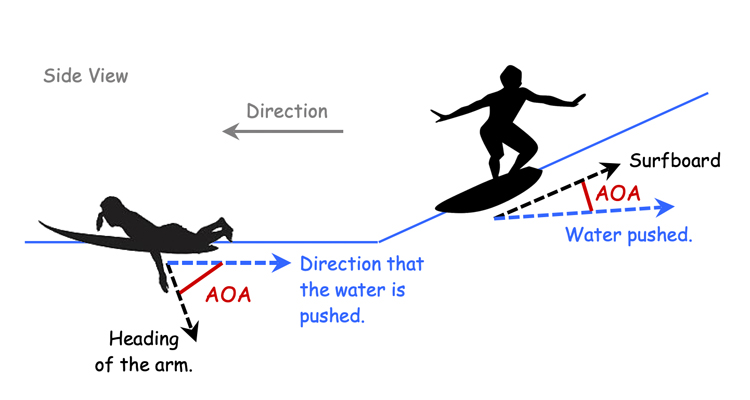 AOA of a surfer's arms and a surfboard