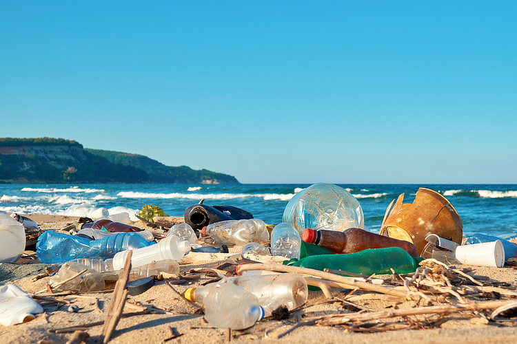 Beach cleanups: surfers could join or organize a beach cleanup to make a more impactful difference on the quality of a sand strip | Photo: Shutterstock