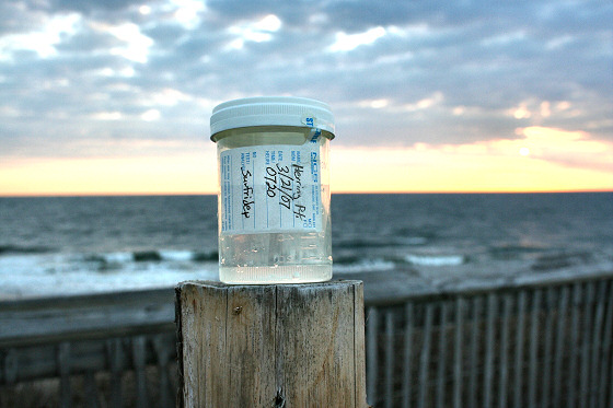 Beach Act: monitoring the quality of American beaches