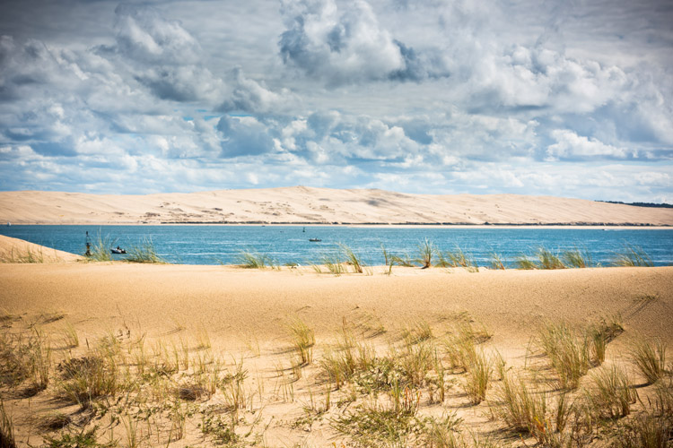 Sand dunes: a strong and healthy beach dune is a powerful antidote against coastal erosion | Photo: Shutterstock