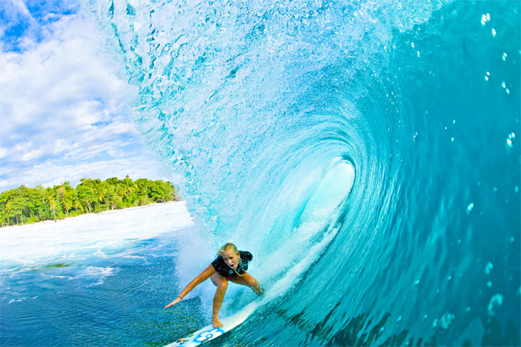 The inspirational quotes by Bethany Hamilton
