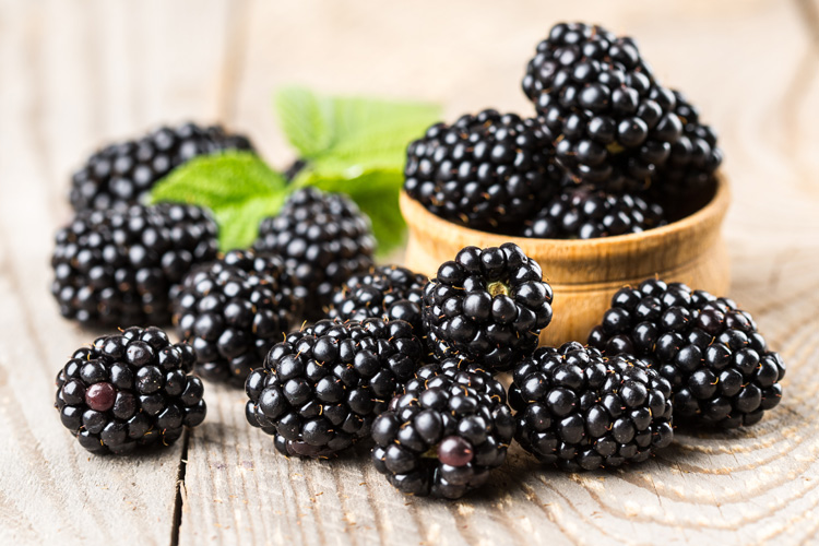 Blackberries: they keep a glowing skin | Photo: Shutterstock