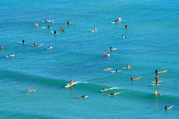 Surfing: a crowded lineup in Waikiki | Photo: Ron Jones/Creative Commons
