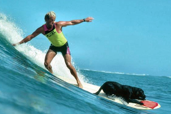 The Dog's Guide to Surfing: da good life