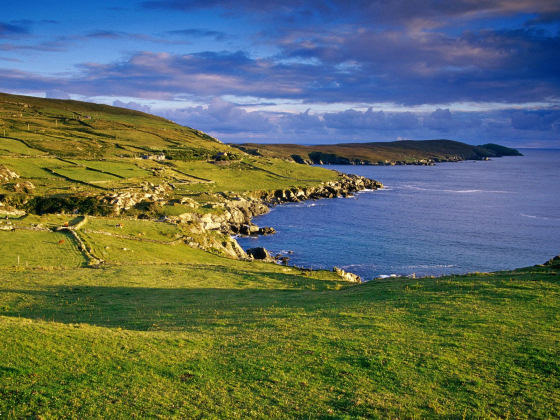 Dursey Head: windy and greeny