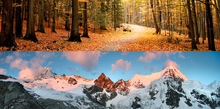 Fall and winter: the colder seasons | Photo: Shutterstock