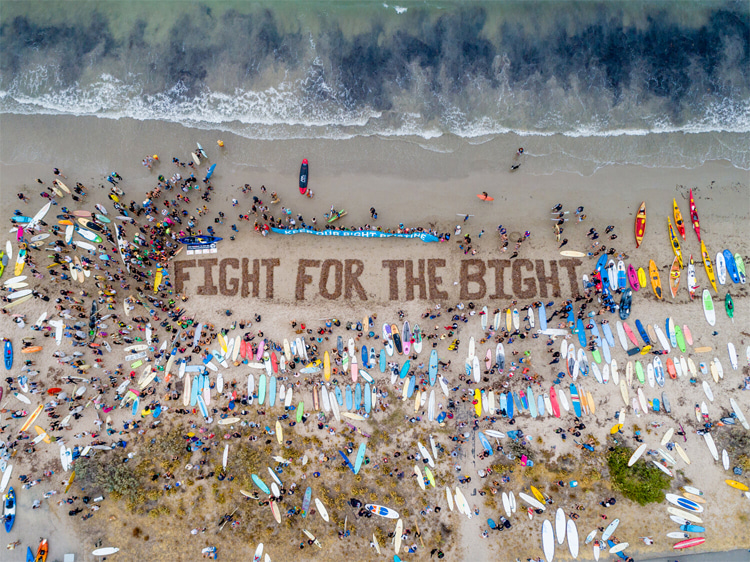 Fight for the Bight: in a world that is trying to go green, we still have to fight to protect Nature | Photo: Fight for the Bight