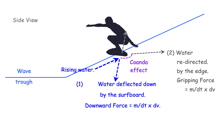 Two forces acting on a surfboard riding a wave