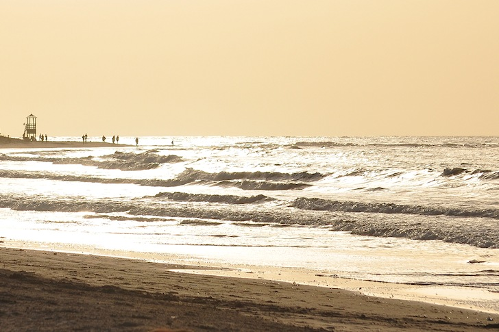 The Gambia: uncrowded waves | Photo: Tony Steele