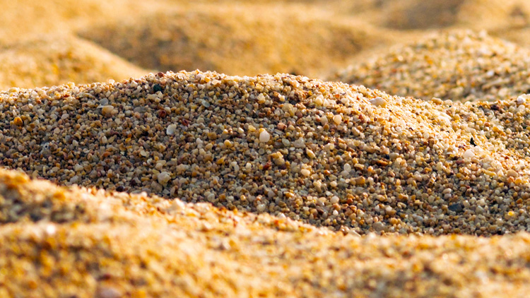 Sand: a mix of abiogenic and biogenic particles | Photo: Shutterstock