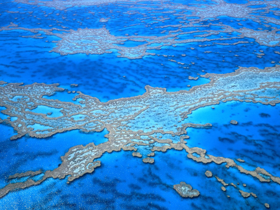 Great Barrier Reef: a natural treasure born in Australia