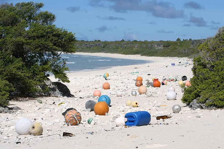 Henderson Island is the most plastic-polluted place in the world