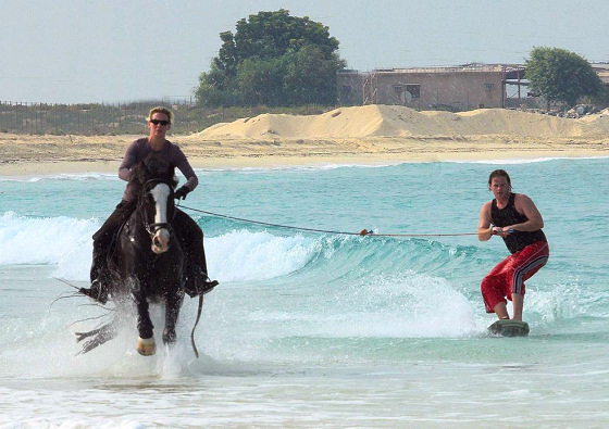 Horse surfing: riding horses and riding waves