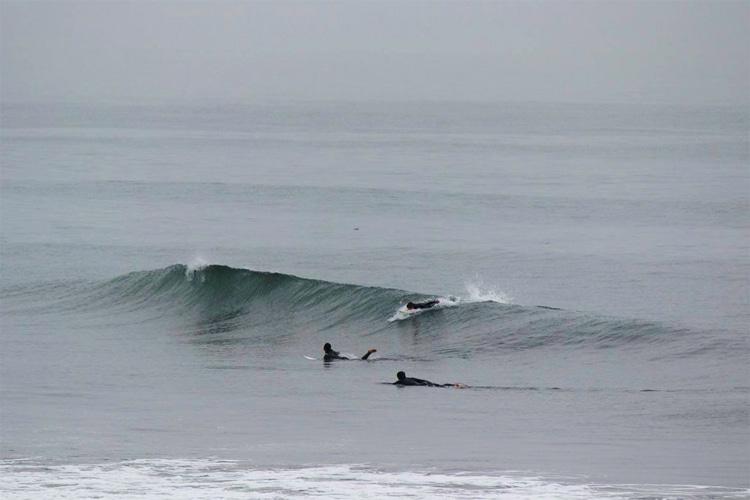 Surfing in Japan: Ibaraki Prefecture   Photo: japansurf.com