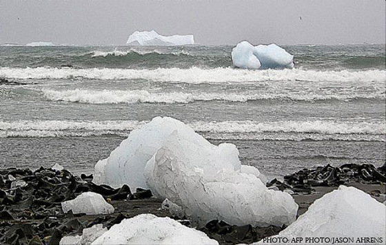 Icebergs breaking up at Bauer Bay Beach