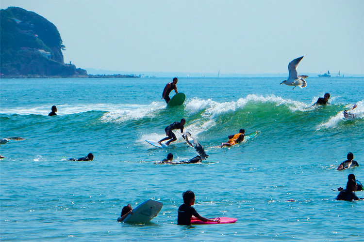 Surfing in Japan: Kanagawa Prefecture   Photo: japansurf.com