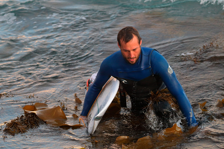 The day I surfed a kelp break