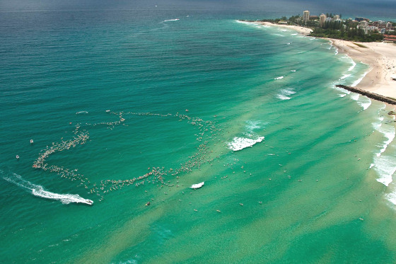 1500 surfers paddle to save Kirra Point