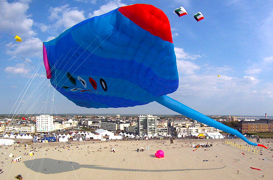 Al Com Mobile >> World's largest kite flies in Berck-sur-Mer