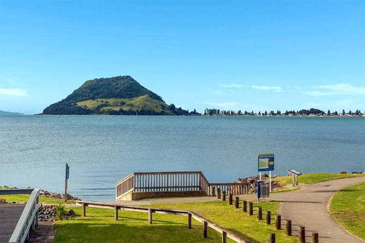 Kulim Park: one of the finest windsurf and kite launching spot in New Zealand | Photo: Harcourts