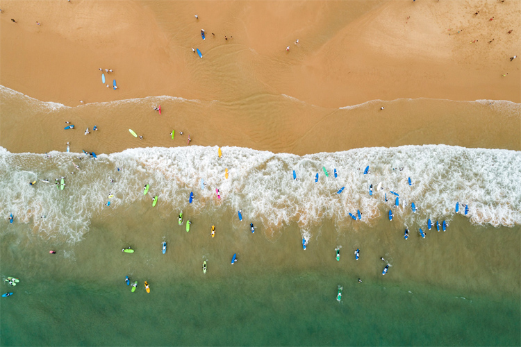 Guinness World Record: the world's largest surfing lesson | Photo: EDP