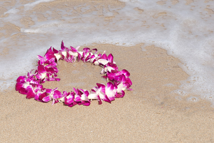 Lei: the colorful Hawaiian necklace can be made using several types of flowers | Photo: Shutterstock