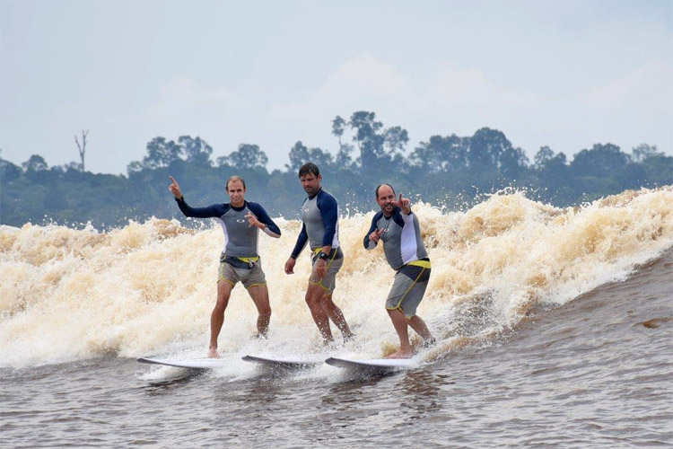 Longest Surfing Ride on a River Bore: James Cotton (middle) surfed 10.6 miles