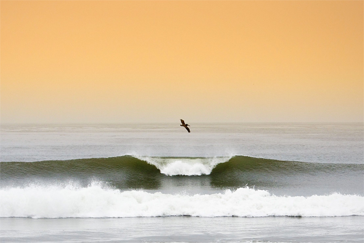 Lower Trestles: going right and left in Southern California