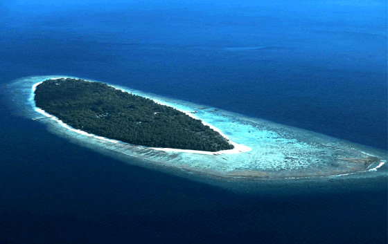 Maldives: surfing is a business in this atoll