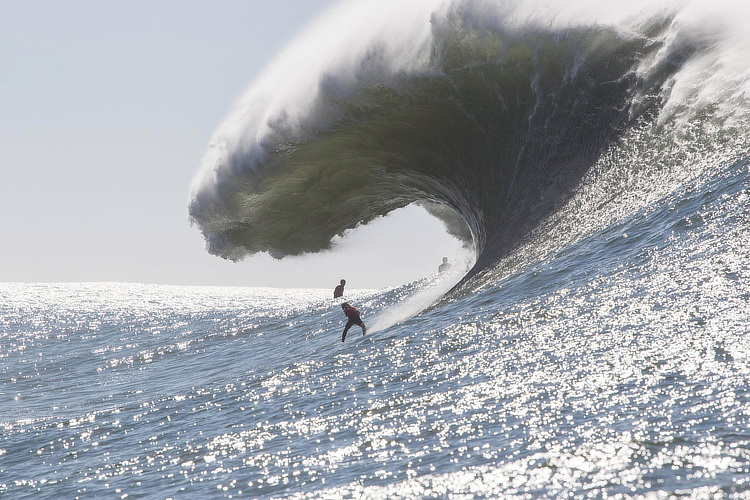 Mavericks: big, sharky, cold and deadly | Photo: Nelly/Red Bull