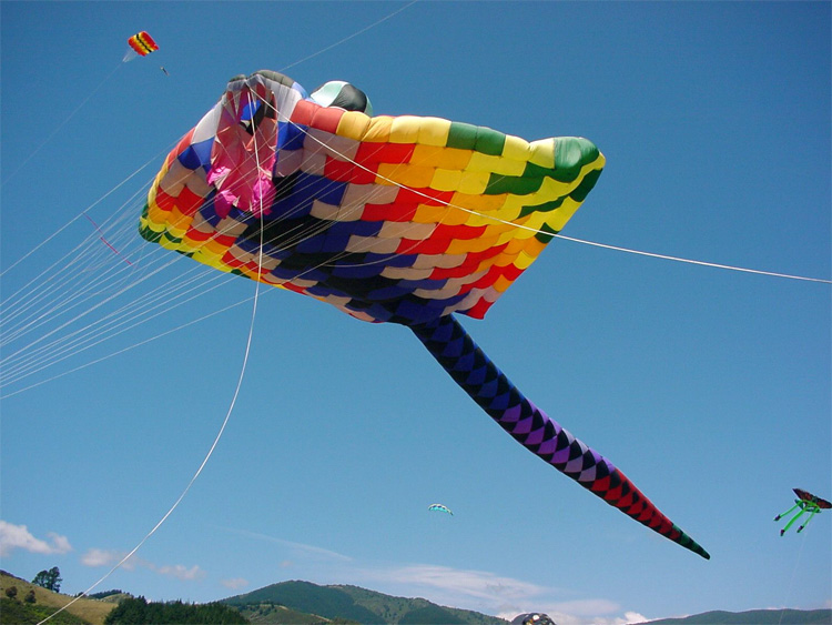 Mega Ray: a large kite built in 1997 by Peter Lynn