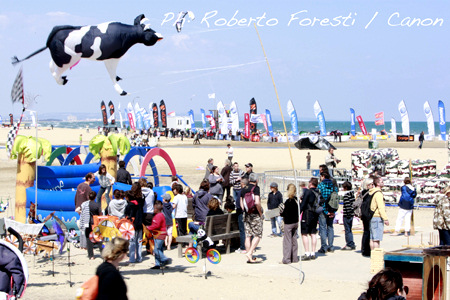 Mondial du Vent 2010: other kites attending the event
