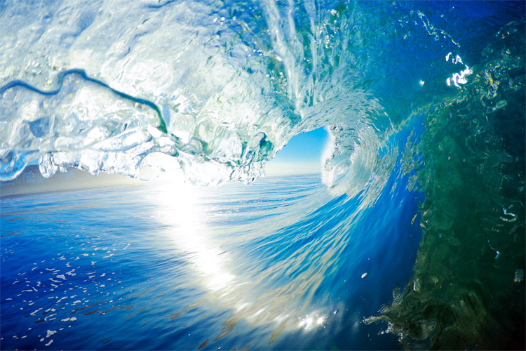 Oceanography: the science that studies the oceans of the world | Photo: Shutterstock