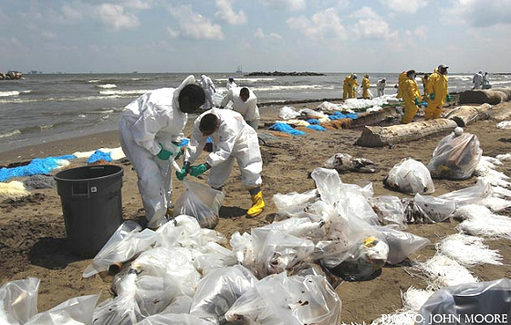 Cleaning the BP mess: this is what happens to our beaches
