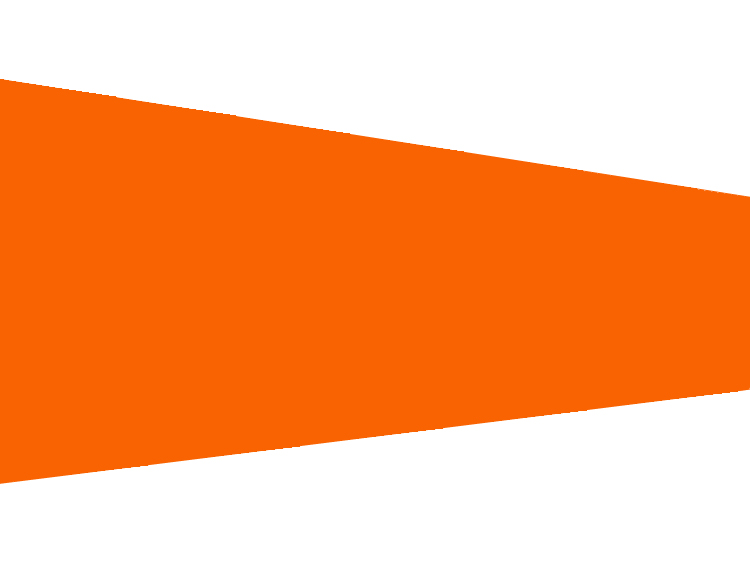 Orange WindsockFlag