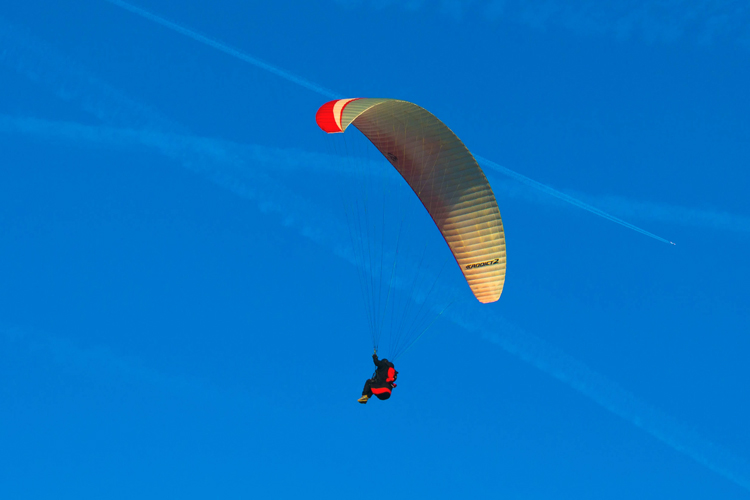 Paragliding: kites, please stay away | Photo: Derek Lee/Creative Commons