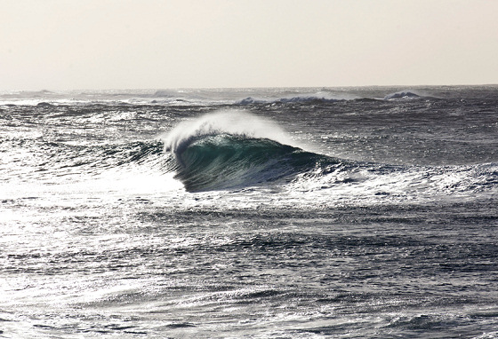 Pipeline: will the IBA World Tour return to its birth?