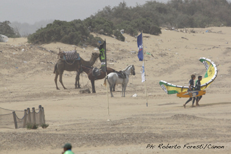 PKRA Essaouira: kiteboarding and camels