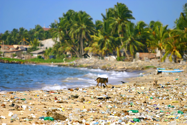 Plastics: by 2050 oceans will contain more weight of plastics than fish | Photo: Bledowski/BigStockPhoto