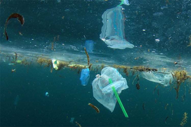 Plastics: they will cost Europe 22 billion euros by 2030 | Photo: AP/European Union