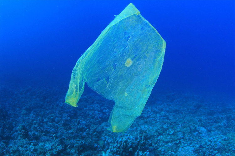 Plastics: every year, 10 million tons of plastics end up in the ocean | Photo: Creative Commons