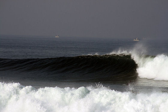 Praia do Cabedelo: world class waves | Photo: SOS Cabedelo