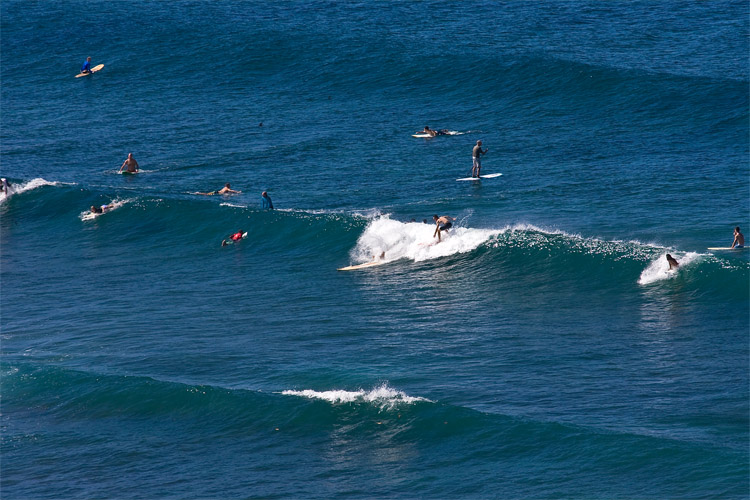 Puerto Rico: one of the best affordable surf destinations in the world | Photo: Earth Missions
