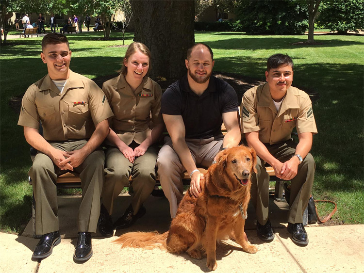 Surf Dog Ricochet: he loved the interview with the Marines | Photo: SDR