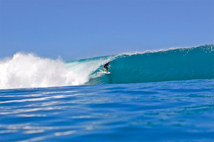 Rob Machado: his surfing style reminds us of Gerry Lopez | Photo: Reef