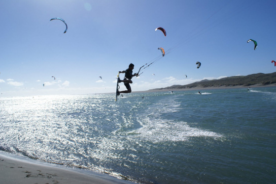 Ruakaka: for birds and kiteboarders